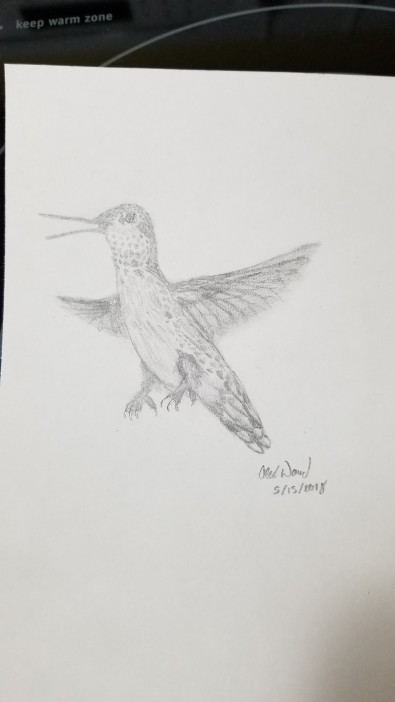 My grandson, Alex drew this for me from my photo.